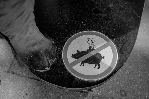 Don't ride the pig! | by florianziegler
