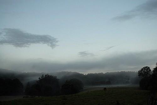 sky mist nature fog clouds landscape evening countryside scenery day australia nsw eveningsky australianlandscape eveninglight rockvalley ruralaustralia northernrivers rurallandscape leycestercreek