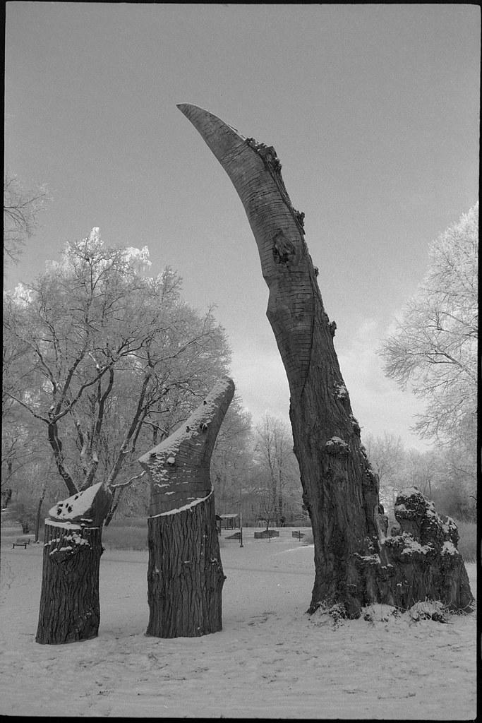 Tuomaanpuisto