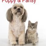 _PJ85057.jpg Poppy and Pansy