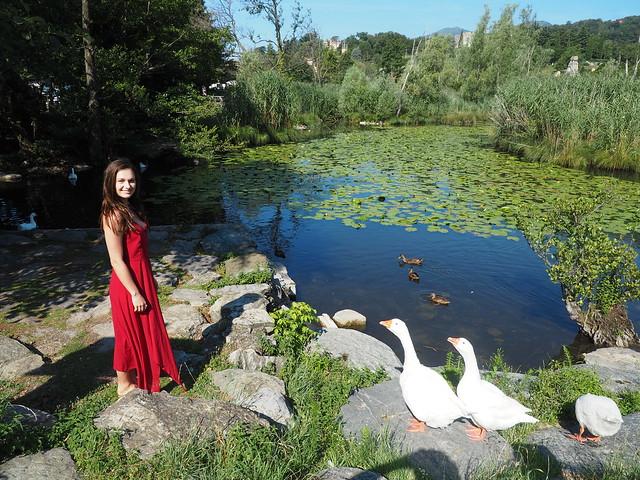 Saskia 54 in Lago Segrino Italy - where is the food?