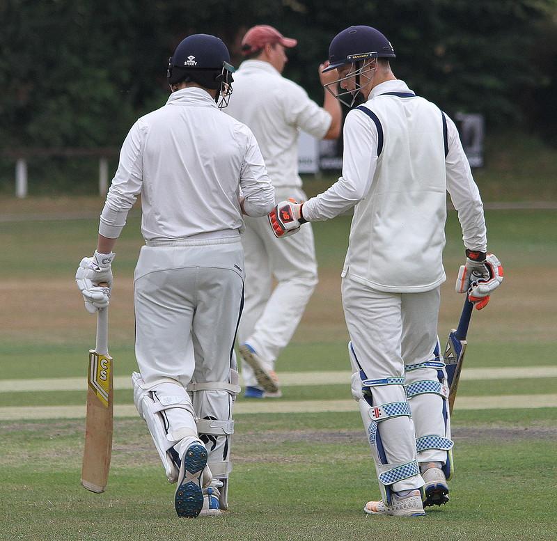 Wellington 1st XI v Bridgnorth 1st XI 21-07-18 (1)