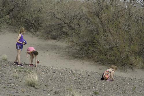 Treasure hunt   by Trail Image