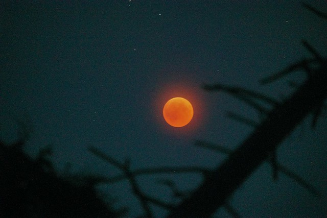 roter Mond 7