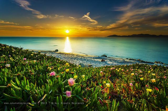 Nature...Sunset
