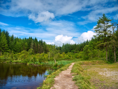 park ireland sky lake nature water clouds forest landscape clare refelection cratloe