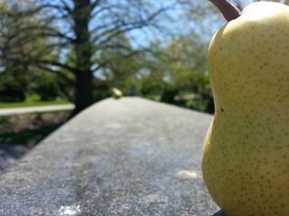 Pears sitting atop Miles Davis's headstone | by Hobo Matt