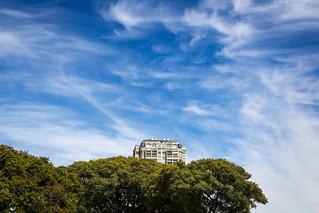 Tree House | by Nico Kaiser
