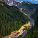 Rainier River Valley by Gabriel Tompkins