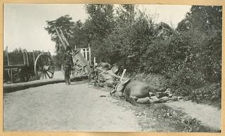 Het slagveld bij Halen - de Zelk Barricade, 13 augustus 1914 | The battlefield at Halen - the Zelk Barricade, 13 August 1914