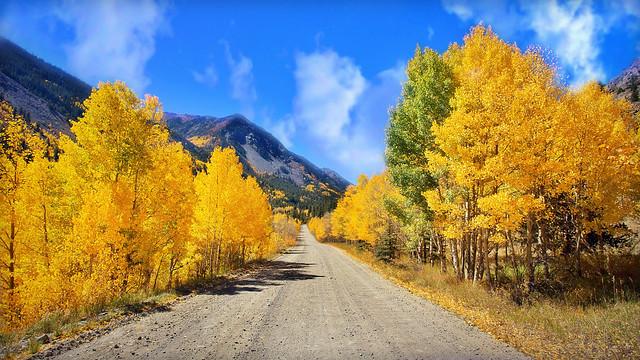 golden edged road