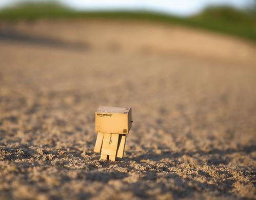 california sunrise golf toy march sand amazon nikon stuck bunker golfcourse thinking figure pga indio onone d800 danbo 2013 terralago