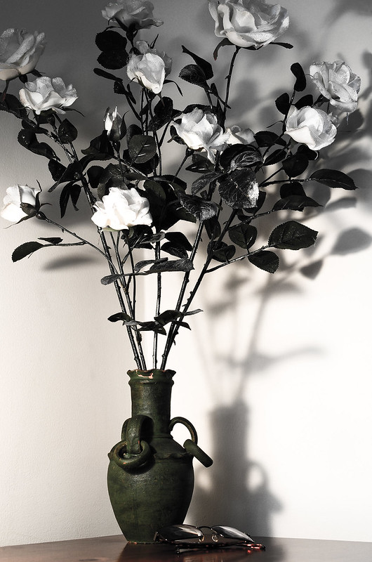 vase and roses