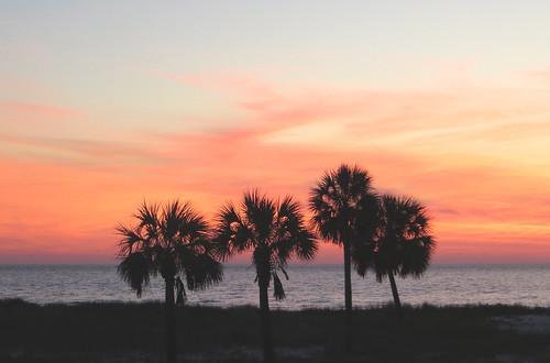 gulfofmexico sunrise florida palmtrees april floridapanhandle baldpointstatepark rkramer62