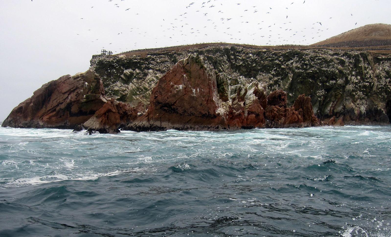 Islas Ballestas 101
