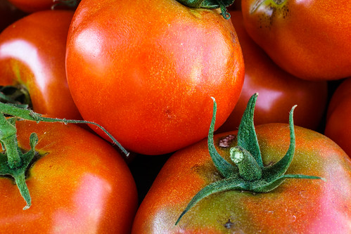 Real tomatoes | by FotoFloridian