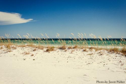 graytonbeach beach sand ourdoor outdoor landscape scenic emeraldcoast gulfcoast panhandle floridapanhandle florida water sea ocean shore gulfofmexico waves dune polarizer vsco vscofilm color colorful