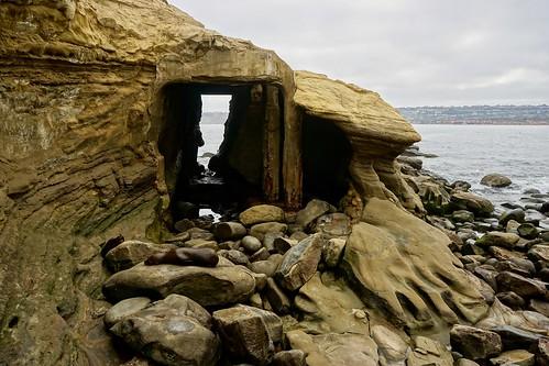 lajolla sandiego california beach ocean coast cave cove pw