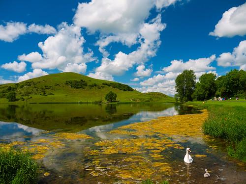 ireland sky lake nature water clouds landscape swan sunny refelection mft panasonicg1