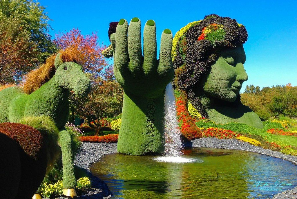 Merveilleux Botanical Gardens   Montreal Quebec, Canada | The Montreal B ...