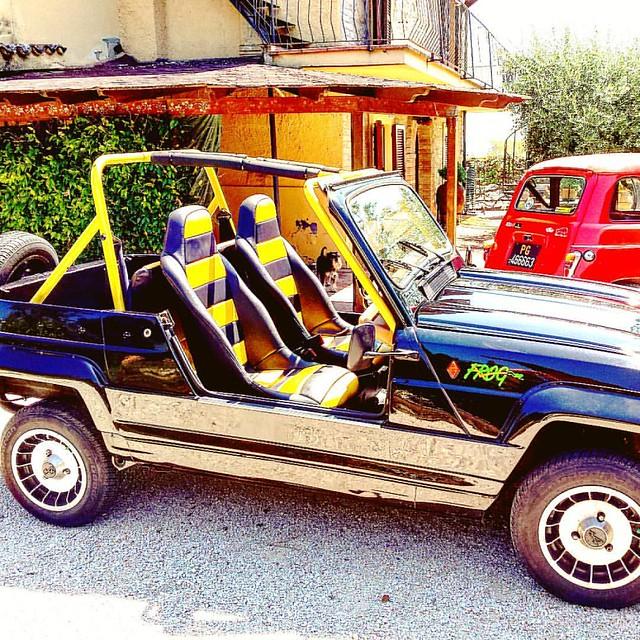 Total PleinAir  #frog #gp4 #pleinair #renault4 #renault #4l #renault4 #khitarro #r4 #classiccar #registrostorico