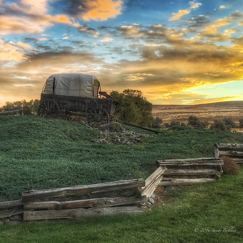 Covered Wagon | by sandy bohlken