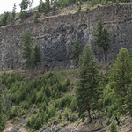 Basalt columns along Yellowstone River