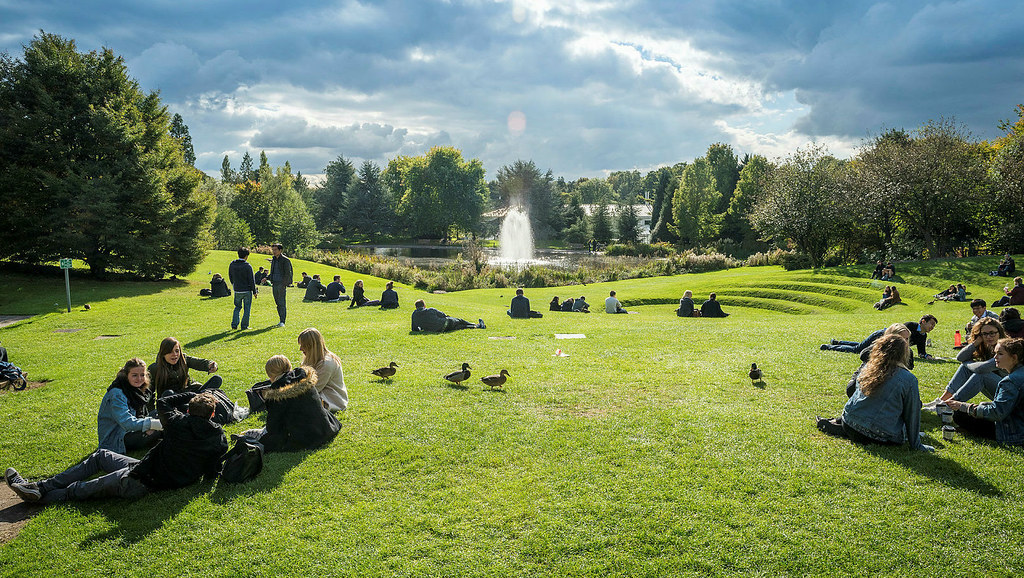 Students sitting on the grass by the campus lake