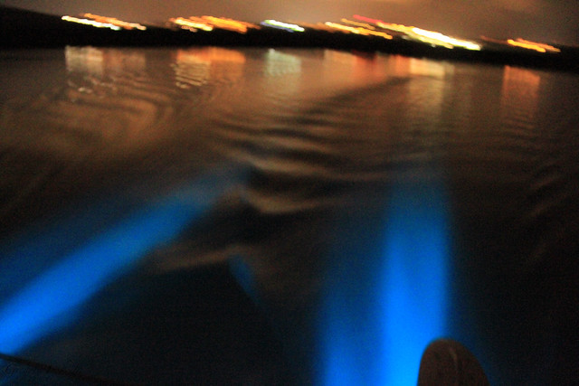 "Bioluminescent Bay (Puerto Mosquito, Mosquito Bay, or ""The Bio Bay"""