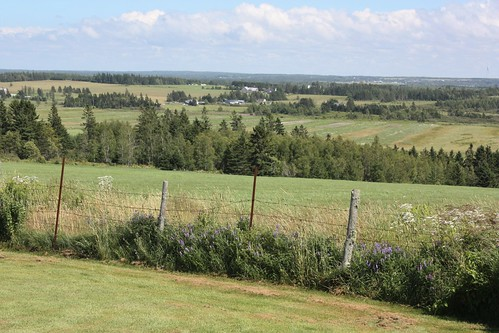 mountwhatley newbrunswick fortlawrence novascotia canada view country fields trees fence