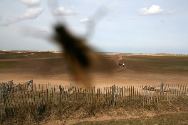 Damn fly, Holkham, Norfolk