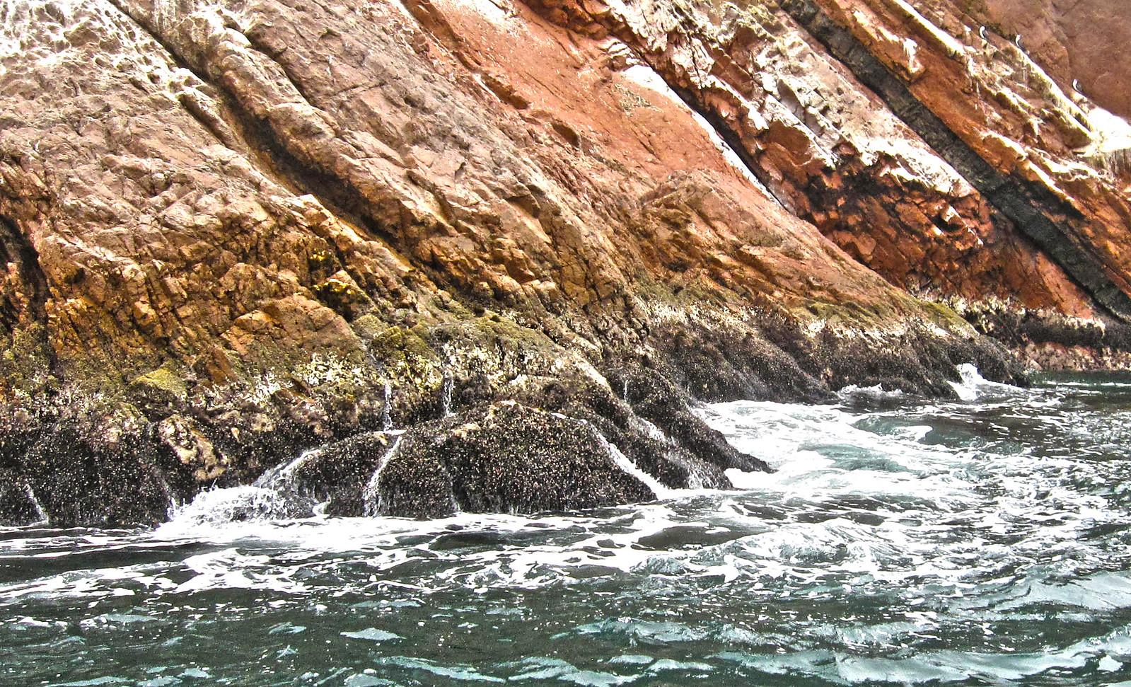 Islas Ballestas 69