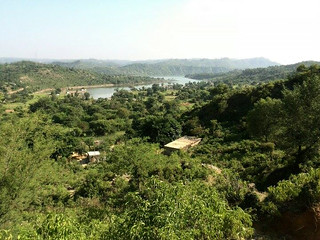 Kallar Syedan Wildlife