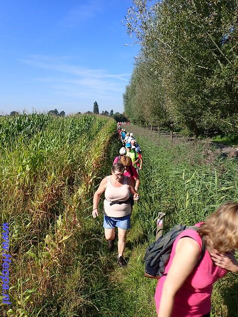 2016-09-07     Rondje - Nijkerk   SOP 25 Km (49)