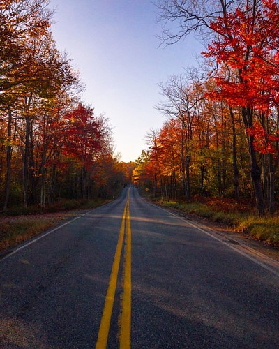 poconos pennsylvania seasons autum road foliage colors fall instagramapp square squareformat iphoneography art autumn blue day color geotagged landscape canonvvacation usa unitedstates photography photos photo travel canon vacation