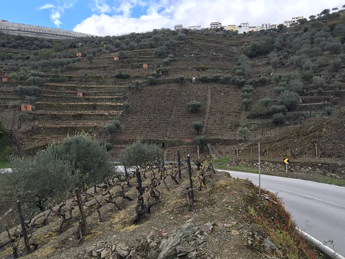 2016-04-16-Vallee-du-Douro-111 | by jacqueschampa