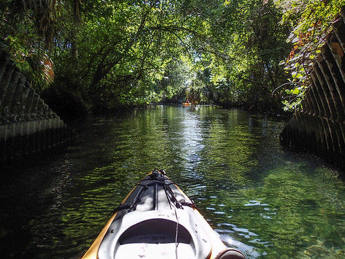 color crystalriver features florida green kayaking landscape manmade river usa water watercraft kayak unitedstates edrosackcom
