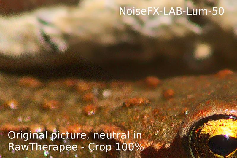 NoiseFX-LAB-Lum-50-crop100percent