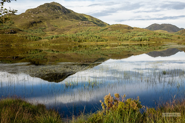 Loch nan Gillean, Glen Affric. Reflection of near perfection.