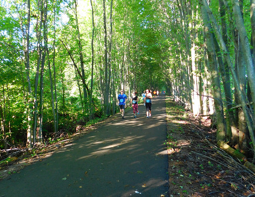 marathon run running runners halfmarathon 131 jog jogging joggers path pathway bikepath trail trailway railtrail railstotrails woods romeo2richmondhalfmarathon armadatownship michigan