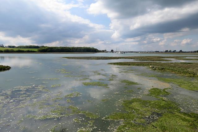 The Yar estuary, Isle of Wight