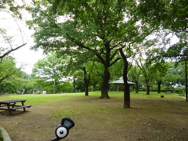 Unown in Sano, Tochigi 14