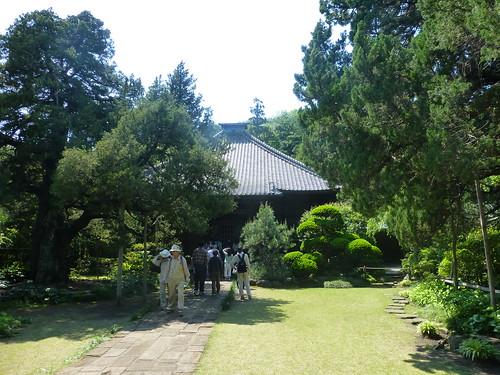 2013/05/04 (土) - 13:22 - 寿福寺