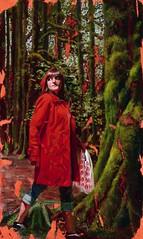 deception in the woods: deborah scott