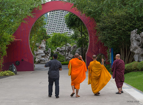 Monks on a mission | by i-lenticularis