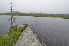 Purcell's Cove Backlands - Flat Lake