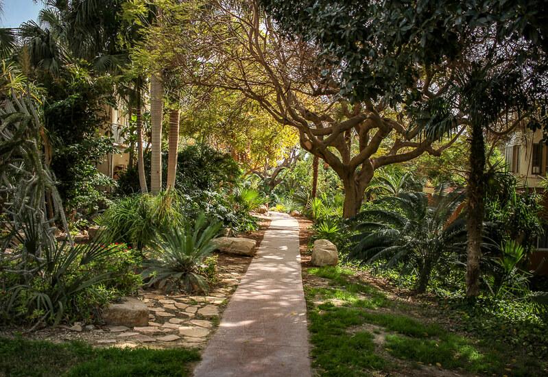 Jardín Botánico Ein Gedi