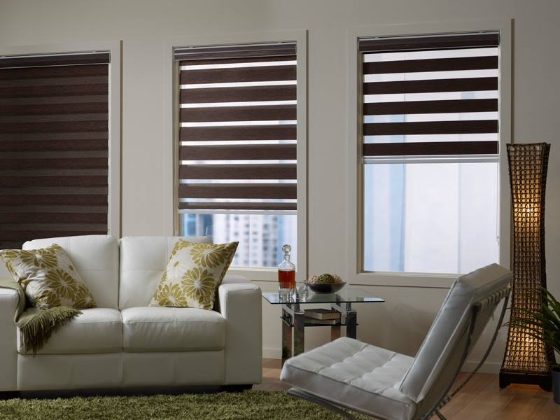 image of indoor blinds