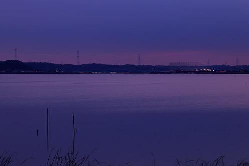 佐倉市 千葉県 日本 jp 佐倉 千葉 印旛沼 夕焼け 夕日 japan chiba sakura inbanuma inbamarsh marsh sunset