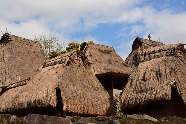 Bena indigenous Ngada village (Flores, Indonesia 2016)